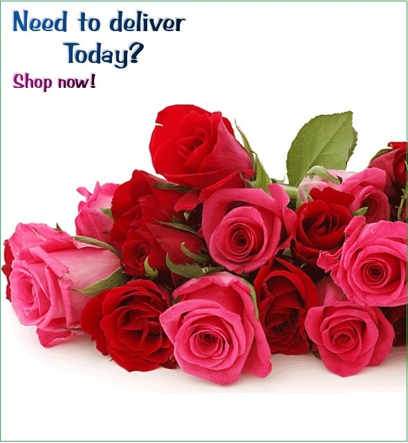 Veronica S Valentine Flowers Gifts Delivery Sri Lanka